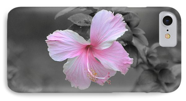 IPhone Case featuring the photograph  Soft Pink by Michelle Meenawong