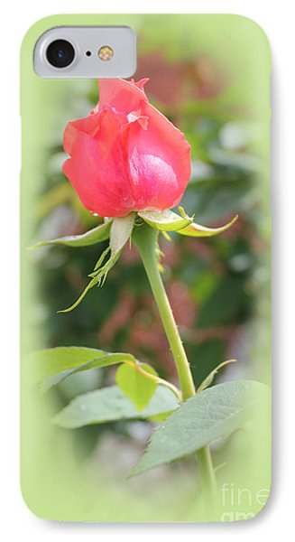 The Heart Of The Rose IPhone Case by Judy Palkimas