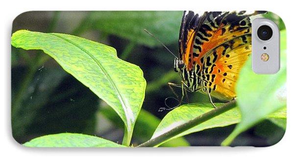 Tiger Wings IPhone Case by Jennifer Wheatley Wolf