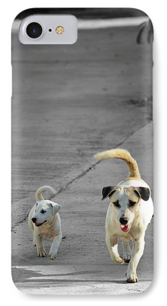 Two Of A Kind IPhone Case by Michelle Meenawong