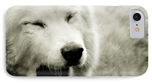 Yawning IPhone Case by Chastity Hoff