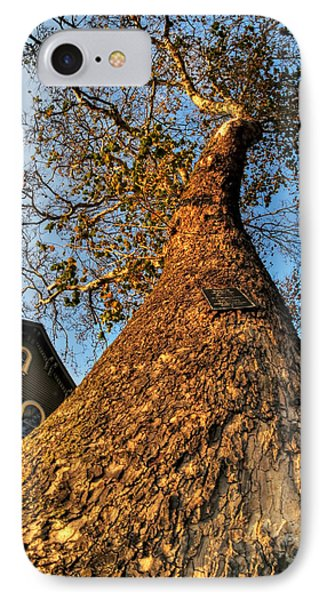001 Oldest Tree Believed To Be Here In The Q.c. Series IPhone Case by Michael Frank Jr