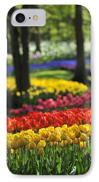 IPhone Case featuring the photograph 090811p124 by Arterra Picture Library