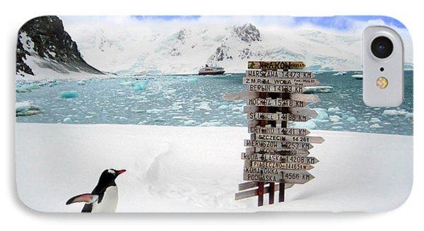 A Gentoo Penguin (pygoscelis Papua IPhone Case by Miva Stock