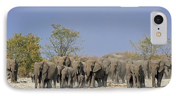 A Herd Of African Elephants IPhone Case by Tony Camacho
