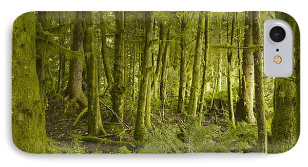 A Lush Forest Tofino British Columbia Phone Case by Ian Grant