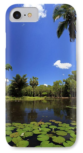 Far North Queensland iPhone 7 Case - A Palm Tree On The Shore Of The Salt by Paul Dymond