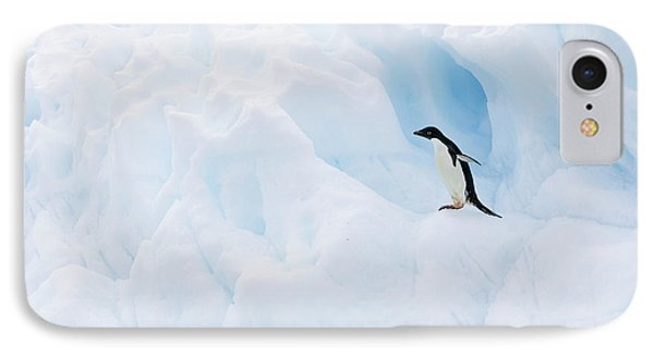 Adelie Penguin On Iceberg Phone Case by Suzi Eszterhas
