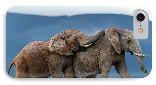 African Elephant Bulls Fighting IPhone Case by Peter Chadwick