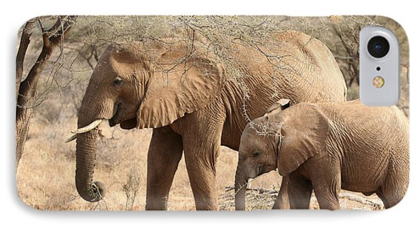 African Elephant Mother And Calf IPhone Case