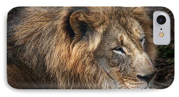 African Lion IPhone Case by Tom Mc Nemar