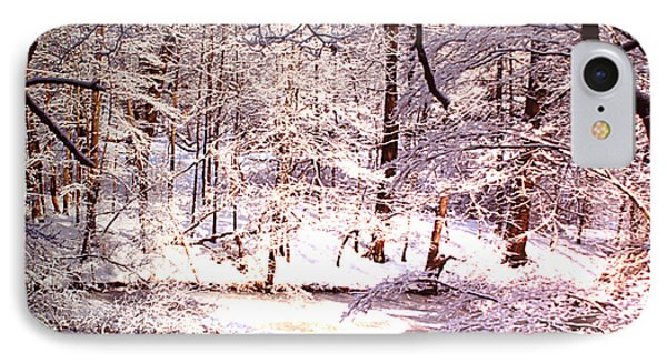 After The Snow IPhone Case by Rita Brown