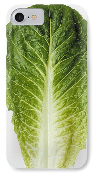 Agriculture - Closeup Of A Romaine IPhone Case by Ed Young