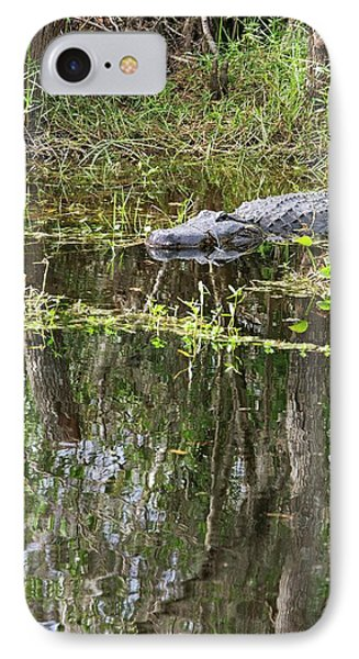 Alligator In Swamp IPhone 7 Case by Jim West