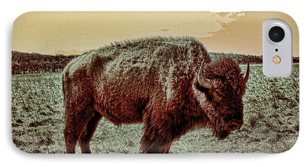 American Buffalo  IPhone Case by Tony Grider