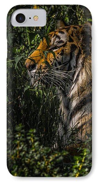 Amur Tiger IPhone Case by Ernie Echols
