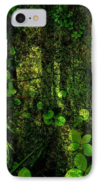 An Earthy Place Phone Case by Shirley Sirois