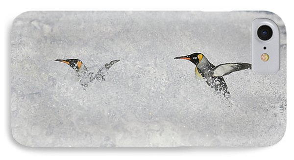 Antarctica, South Georgia, Salisbury IPhone Case