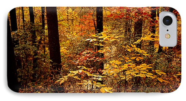 IPhone Case featuring the photograph Appalachian Fall by Phyllis Peterson