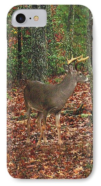 Autumn Buck IPhone Case