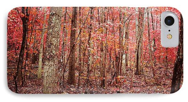 Autumn Landscape IPhone Case by Kim Fearheiley