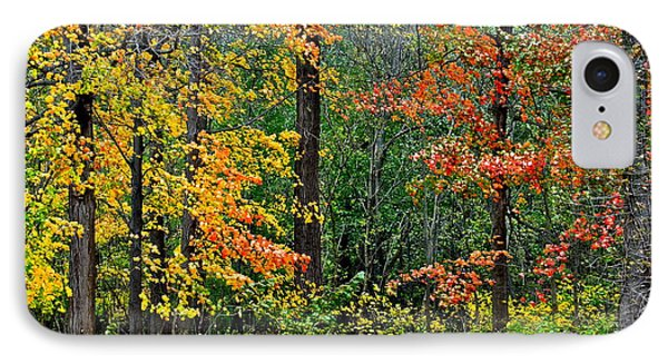 Autumn Landscape Phone Case by Frozen in Time Fine Art Photography