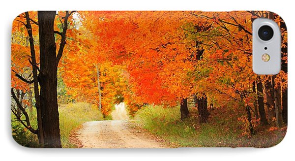 IPhone Case featuring the photograph Autumn Trail by Terri Gostola