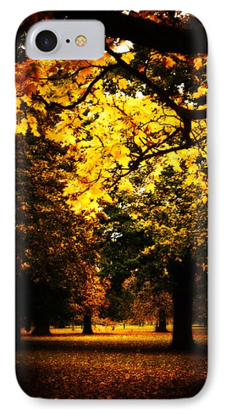 Autumnal Walks IPhone Case by Lenny Carter