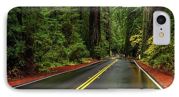 Avenue Of The Giants Passing IPhone Case