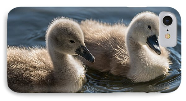 Baby Swans IPhone Case by Michael Mogensen