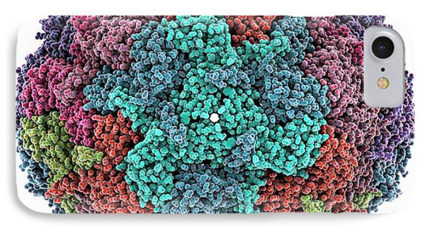 Bacterial Nanocompartment IPhone Case