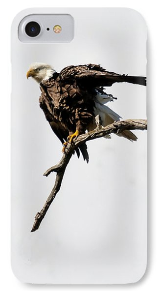 IPhone Case featuring the photograph Bald Eagle 8 by David Lester
