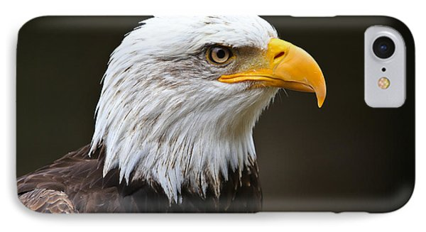 Majestic Bald Eagle  IPhone Case by John Roberts