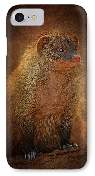 Banded Mongoose IPhone Case