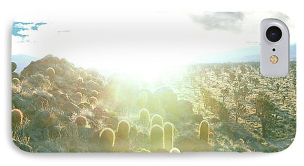 Barrel Cactus And Joshua Trees IPhone Case by Panoramic Images