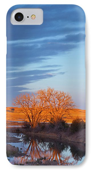 Bathed In Sunset Light The Calamus IPhone Case