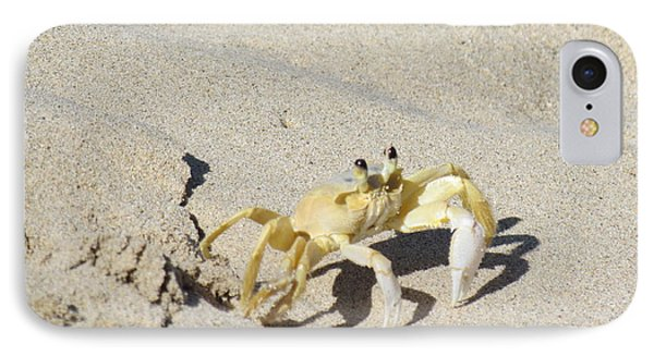 IPhone Case featuring the photograph Beach Stroller by Meagan  Visser