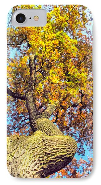 Beautiful Autumn Landscape IPhone Case by Odon Czintos