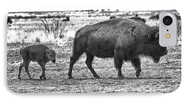 Bison Mother And Calf IPhone Case by Melany Sarafis