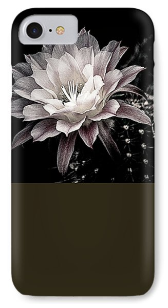 Blooming Cactus IPhone Case by Julie Palencia