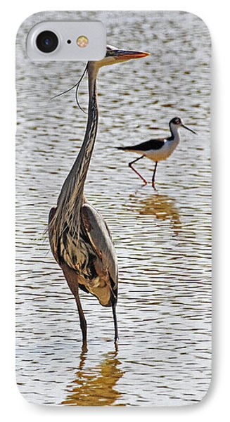 Blue Heron And Stilt IPhone Case by Tom Janca
