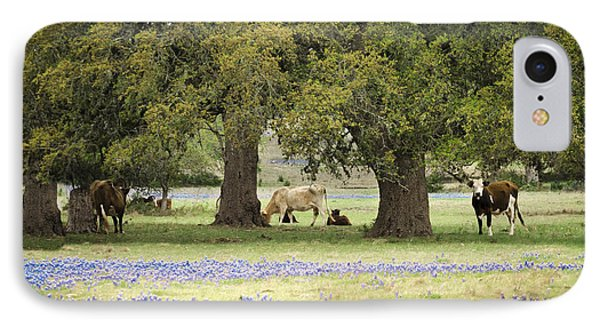 Bluebonnets And Bovines IPhone Case by Debbie Karnes
