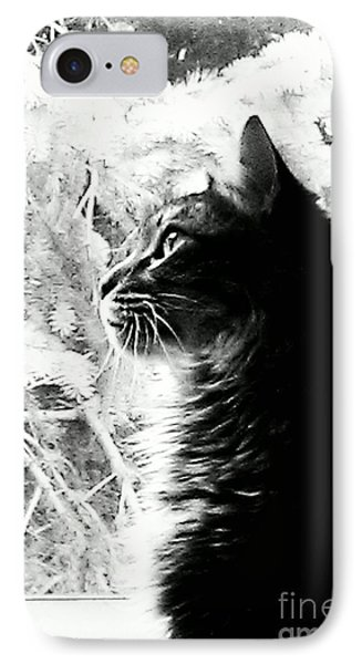 IPhone Case featuring the photograph Bo by Jacqueline McReynolds