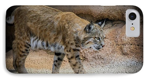 IPhone Case featuring the photograph Bobcat by Elaine Malott
