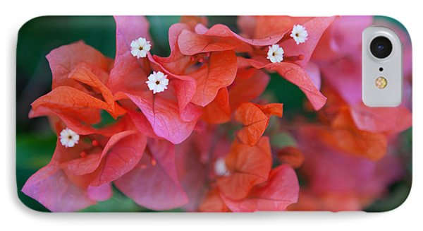 Bougainvillea IPhone Case by Roselynne Broussard