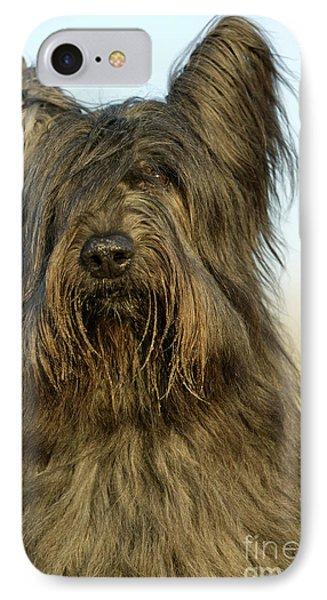 Briard Dog IPhone Case by Jean-Michel Labat