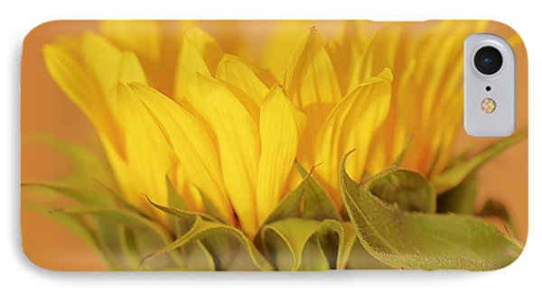 Bright And Sunny IPhone Case by Deborah  Crew-Johnson