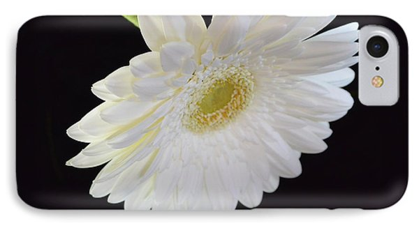 IPhone Case featuring the photograph Bright White Gerber Daisy # 2 by Jeannie Rhode