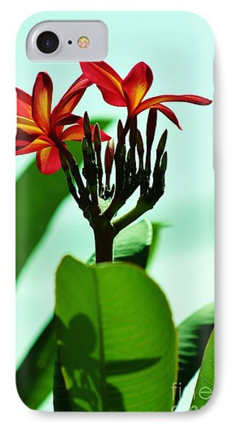 IPhone Case featuring the photograph Buds And Blossoms by Craig Wood