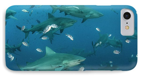 Bull Shark (carcharhinus Leucas IPhone Case by Pete Oxford